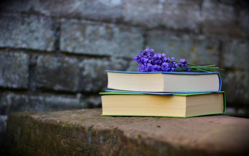 Читать или не читать