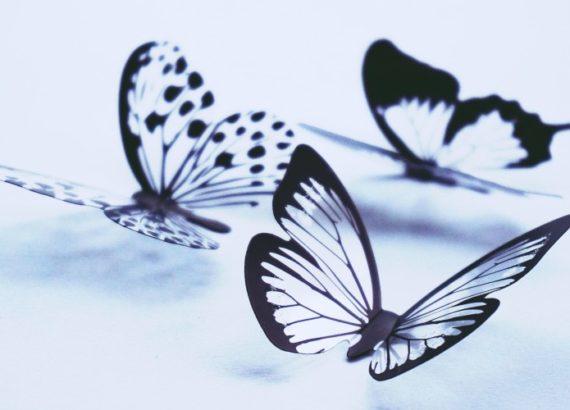 Эффект бабочки   Детские травмы
